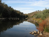 Picture of / about 'Murrumbidgee River' New South Wales and the Australian Capital Territory - Murrumbidgee River