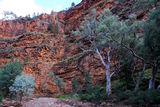 Picture relating to North Flinders Ranges - titled 'Gorge near Aroona'