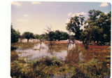 Picture relating to Uteara - titled 'Uteara Chinamans Creek in Flood'