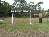 Picture relating to Barongarook - titled 'Barongarook'