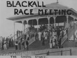 Picture relating to Blackall - titled 'Members in the grandstand at the Blackall race meeting, March, 1908'