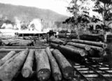 Picture relating to Canungra - titled 'Canungra Sawmill, ca. 1913'