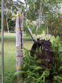 Picture relating to Moreton Telegraph Station - titled 'Moreton Telegraph Station Flood Marker'