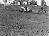 Picture relating to Acton - titled 'Australian Institute of Anatomy with Fordson tractor and a plough excavating the foundations, McCoy Circle, Acton.'