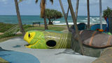 Picture relating to Bargara - titled 'Bargara: The Children's Turtle Playground'