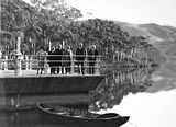 Picture relating to Cotter Dam - titled 'Group at the Cotter Dam, including Sir Littleton Groom.'