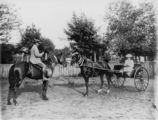 Picture of / about 'Warwick' Queensland - Riding in a sulky, Warwick, ca. 1893