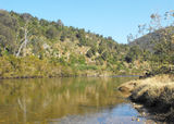 Picture of / about 'Mitchell River National Park' Victoria - Mitchell River National Park