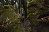 Three Capes Track,Tasmania