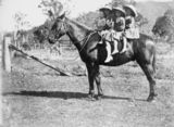 Picture relating to Canungra - titled 'Four children on a horse at Canungra, 1900-1910'
