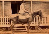 Picture relating to Mackay - titled 'Decima Rawson seated side saddle on a horse outside The Nyth, Mackay'