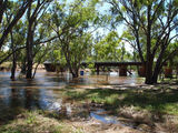 Picture relating to Rochester - titled 'Campaspe River in flood'