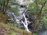 Picture relating to Yabba Falls - titled 'Boolumba Creek Falls'