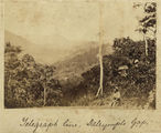 Picture relating to Ingham - titled 'Telegraph pole and line running through the hills at Dalrymple Gap, near Ingham, ca. 1881'
