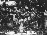 Picture relating to Cooktown - titled 'Front garden of a house in Cooktown, ca. 1907'