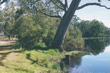 Picture relating to Cherrypool - titled 'Cherrypool Rest Area: Glenelg River, Henty Hwy'