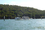 Picture relating to Hawkesbury River - titled 'Dead Horse Bay, Hawkesbury River'