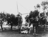 Picture relating to Queensland - titled 'Windlass used for lifting an animal during butchering'