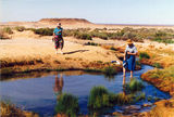 Picture relating to Mound Springs - titled 'Mound Springs, Central Australia'
