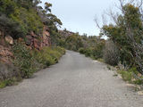 Picture relating to Mount William - titled 'The road to the top'