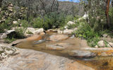Picture relating to Gibraltar Creek - titled 'Gibraltar Creek below Gibraltar Falls'