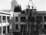 Picture relating to Parliament House - titled 'Pot plants being hoisted on to the roof of Old Parliament House'