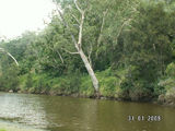 Picture of / about 'Emu Creek' Queensland - Emu Creek