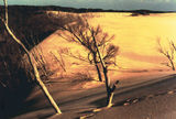 Picture relating to Henty Dunes - titled 'Henty Dunes'