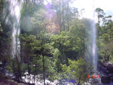 Picture relating to Paradise Falls - titled 'Paradise Falls'