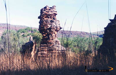Picture of / about 'Gregory National Park' the Northern Territory - Gregory National Park