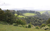 Picture relating to Dorrigo - titled 'Dorrigo Plateau'