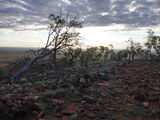 Picture relating to Mount Oxley - titled 'Mount Oxley at Sunset'