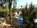 Picture of / about 'Kathleen Falls' the Northern Territory - Kathleen Falls