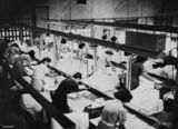 Picture relating to Sandgate - titled 'Inside the Pelaco shirt factory, Sandgate, Brisbane, 1948'