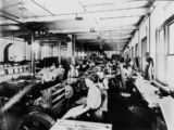 Picture of / about 'Brisbane' Queensland - Letterpress department, Government Printing Office, Brisbane, 1921