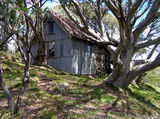 Picture relating to Cope Hut - titled 'Falls Creek - Cope hut'