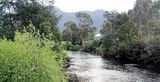 Picture relating to Gunns Plains - titled 'Gunns Plains - Leven River'