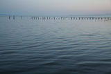 Picture relating to Port Phillip - titled 'Port Phillip at dusk'