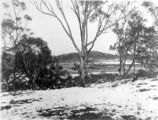 Picture relating to Braddon - titled 'Record fall of snow - Braddon under snow, from Mt Ainslie. . Ainslie Hotel in the centre.'