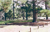Picture relating to Mount Arapiles-Tooan State Park - titled 'Mount Arapiles-Tooan State Park: Centenary Park camp ground'