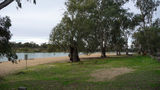 Picture relating to Murray River - titled 'Chaffey Bend in Mildura'