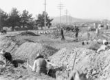 Picture relating to Kingston - titled 'Drainage trenches along a power line in Forrest. Concrete drain pipes along the trench, Kingston Power Station in background.'