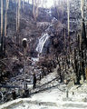 Picture relating to Marysville - titled 'Stevenson Falls'