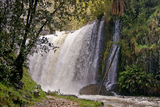Picture relating to Guide Falls - titled 'Guide Falls, Ridgley, Tasmania'