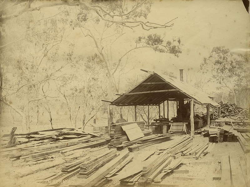 Picture of / about 'Inkerman' Queensland - Inkerman sawmill, ca. 1885