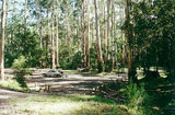 Picture relating to Tyers Junction - titled 'Tyers Junction bush camp/rest area'