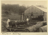 Picture of / about 'Blackall Range' Queensland - Outside the Maleny Sawmill in the Blackall Range