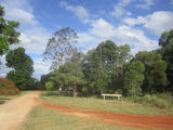 Picture relating to Archookoora State Forest - titled 'Archookoora State Forest'