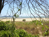 Picture relating to Curtis Island - titled 'Curtis Island'
