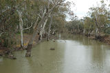 Picture of / about 'Mulligans Creek' New South Wales -